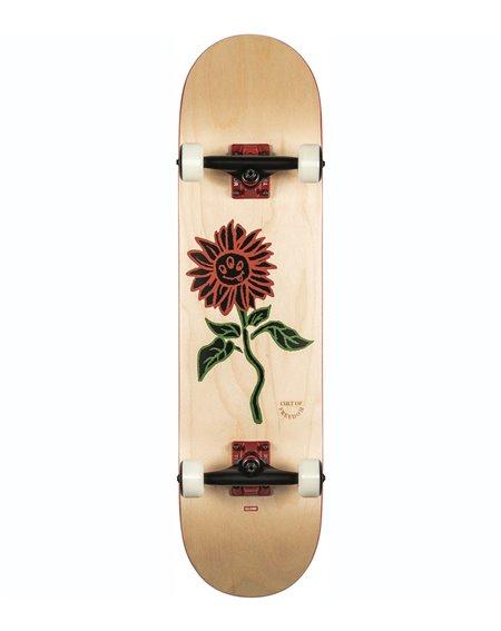 """Globe G2 Bloom 8.00"""" Complete Skateboard Natural"""