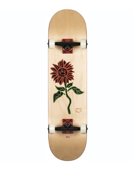 """Globe G2 Bloom 8.00"""" Komplett-Skateboard Natural"""